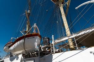 Fregata Dar Pomorza